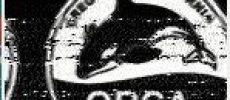 01/OCT/19 Report